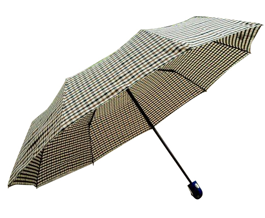 Best Foldable Umbrellas