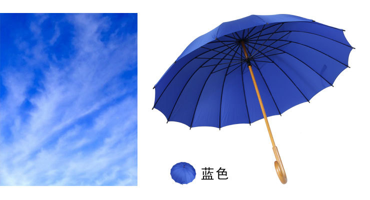 Stick Umbrellas with Wooden Shaft Crooked Handle XI